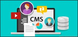 what is cms systems